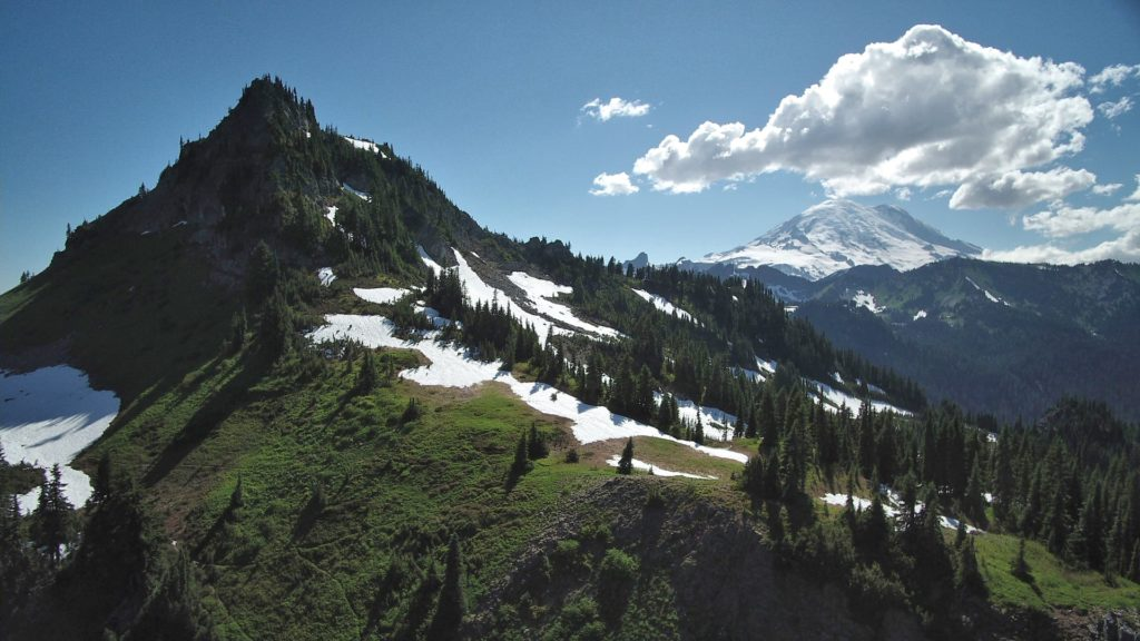 Photo from Oregon section of the PCT
